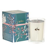 teal Carolyn Donnelly Eclectic Soy Blend Candle