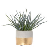 gold Carolyn Donnelly Eclectic Chive Potted Plant