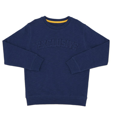 a5ff7cec denim Boys Crew Neck Sweater (3-13 years)