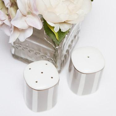 light-greyFrancis Brennan the Collection Stripe Bone China Salt And Pepper Set