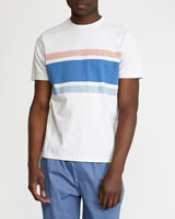 greyPrinted Stripe Peached Short-Sleeved T-Shirt