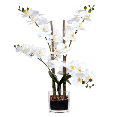 Artificial Flowers White Orchid In Glass Vase Dunnes Stores
