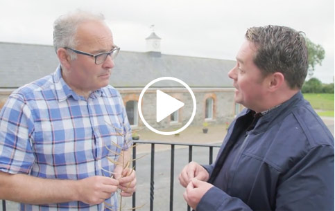 Neven Maguire meets our Rapeseed Oil Producer