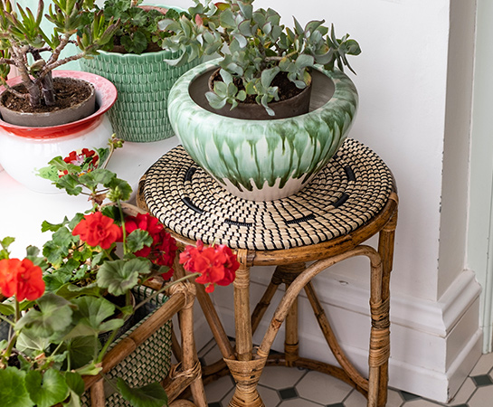 Carolyn Donnelly eclectic home