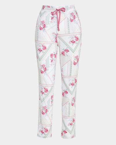 Cotton Modal Pant