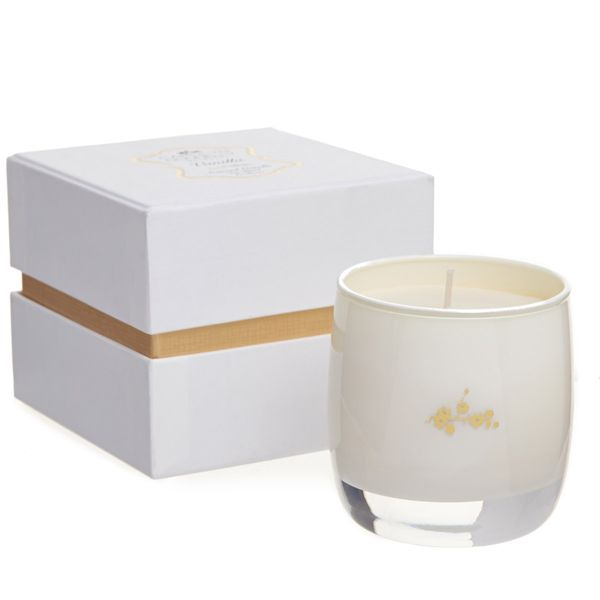 Carolyn Donnelly Eclectic Soy Candle