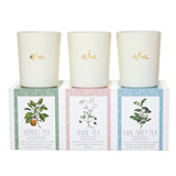multi Carolyn Donnelly Eclectic Soy Blend Votive Set - Pack Of 3