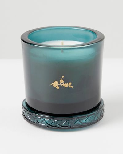 Carolyn Donnelly Eclectic Glass Lid Candle