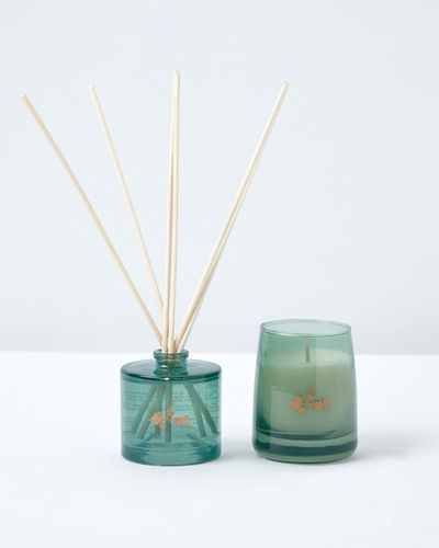 Carolyn Donnelly Eclectic Candle And Diffuser Gift Set