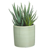 green Carolyn Donnelly Eclectic Small Faux Plant