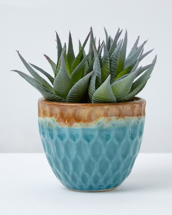 Carolyn Donnelly Eclectic Faux Aloe Plant In Glazed Pot