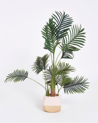 Carolyn Donnelly Eclectic Faux Palm Plant In Ceramic Pot