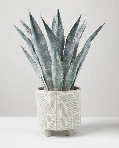 Carolyn Donnelly Eclectic Artificial Plant In Aztec Pot