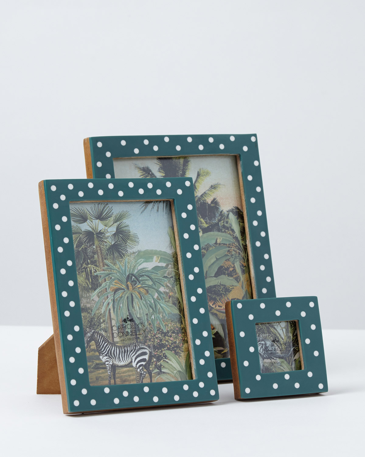 Dunnes Stores Green Carolyn Donnelly Eclectic Polka Dot Frames