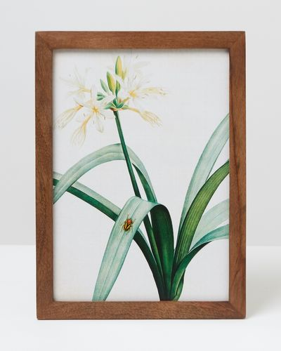 Carolyn Donnelly Eclectic Floral Wall Art thumbnail