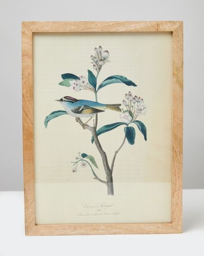 Carolyn Donnelly Eclectic Bird Wall Art
