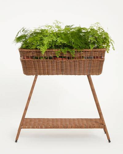 Carolyn Donnelly Eclectic Trio Rattan Plant Stand