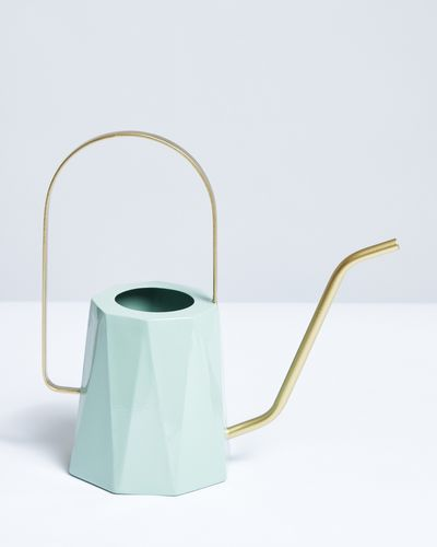 Carolyn Donnelly Eclectic Design Watering Can