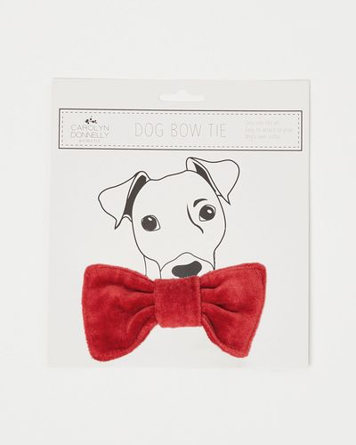 Carolyn Donnelly Eclectic Pet Bow Tie