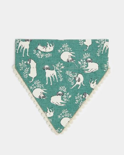 Carolyn Donnelly Eclectic Pet Bandana