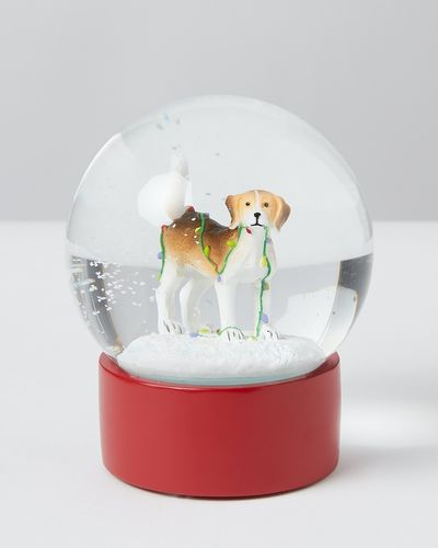 Carolyn Donnelly Eclectic Snow Globe