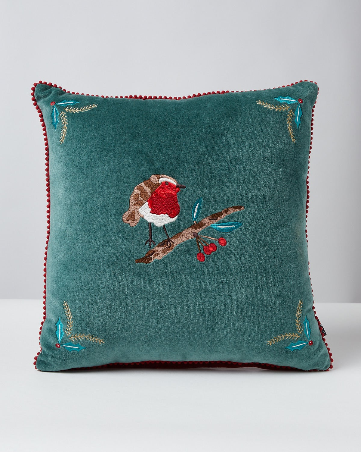 Dunnes Stores Red Carolyn Donnelly Eclectic Robin Cushion