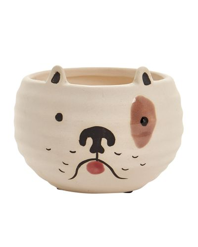 Carolyn Donnelly Eclectic Dog Planter