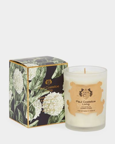 Paul Costelloe Living Madagascar Candle