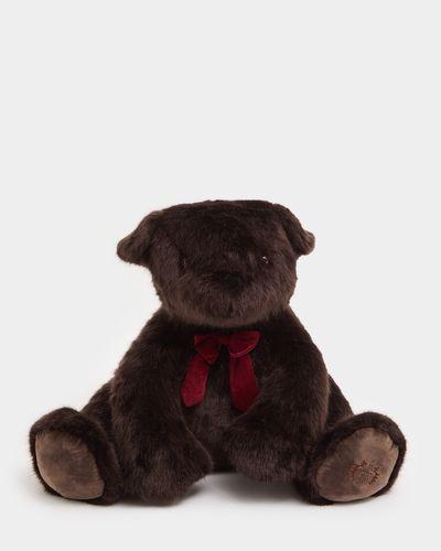 Paul Costelloe Living Giant Brown Bear