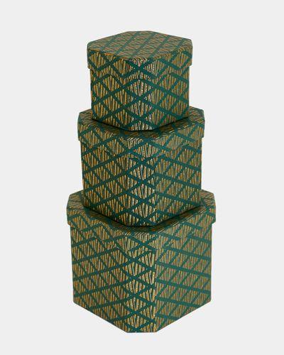 Paul Costelloe Living Green Gift Box