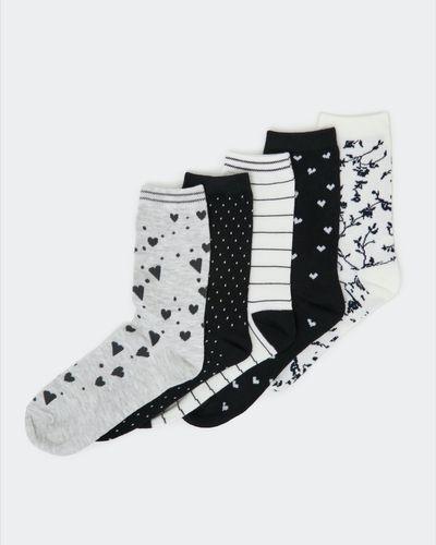 Design Crew Sock - Pack Of 5