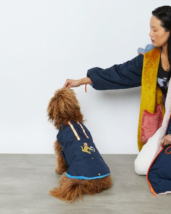 Joanne Hynes Tiger Lady Friend Dog Coat