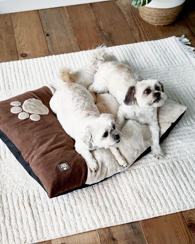 Microplush Dog Bed