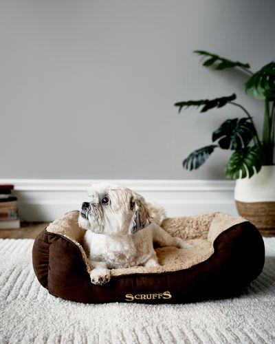 Cosy Box Bed