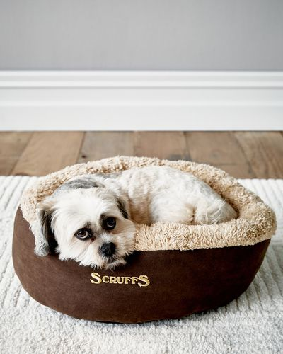 Cosy Donut Bed