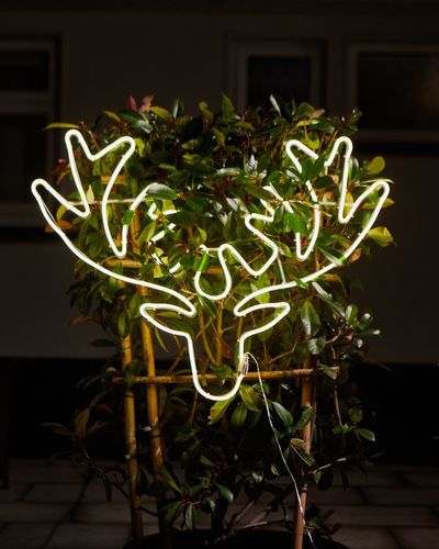 Reindeer Wall Light