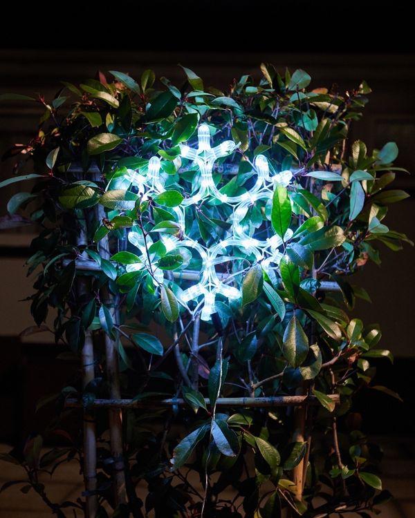 Snowflake Wall Light