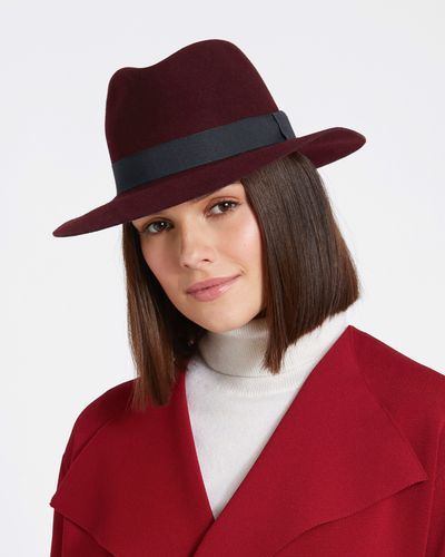 Paul Costelloe Living Studio Wool Fedora Hat