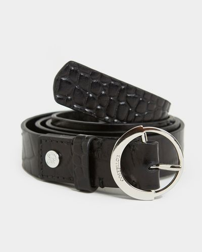 Paul Costelloe Living Studio Croc Leather Belt