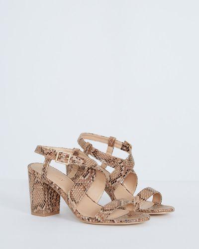 Gallery Snake Double Strap Sandal