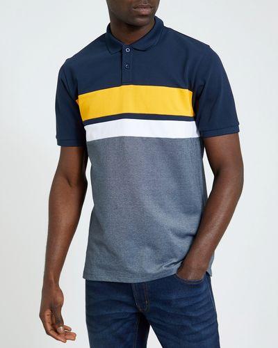 Regular Fit Colour Block Polo