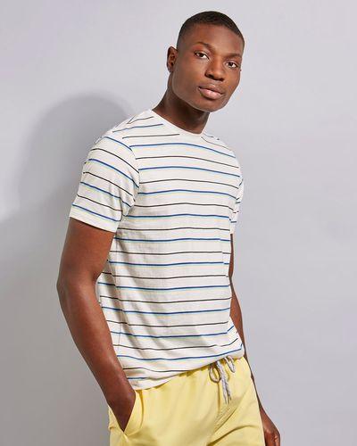 Regular Fit Stripe Tshirt