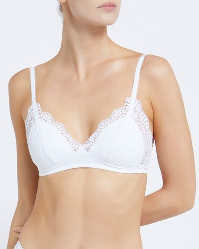 Lace Non Wired Padded Bralette