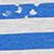 Blue-Navy