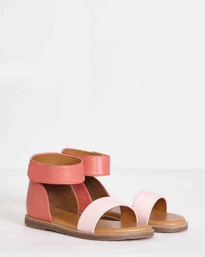 Leigh Tucker Willow Heidi Leather Sandals