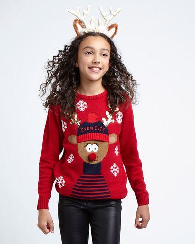 Reindeer Family Jumper (12 months-14 years)