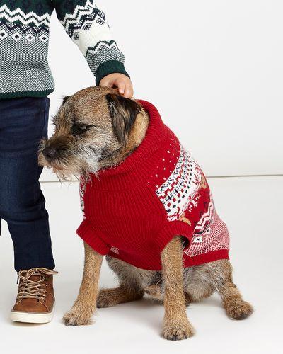 Fair Isle Family Dog Outfit