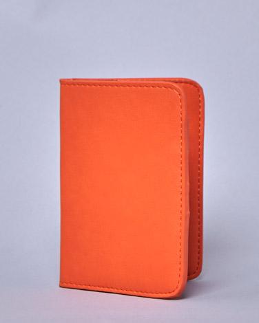 orangeLennon Courtney at Dunnes Stores Passport Cover