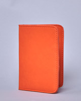 orange Lennon Courtney at Dunnes Stores Passport Cover