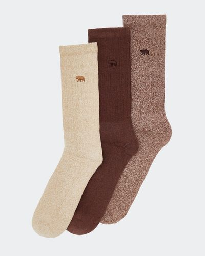 Casual Socks - Pack Of 3